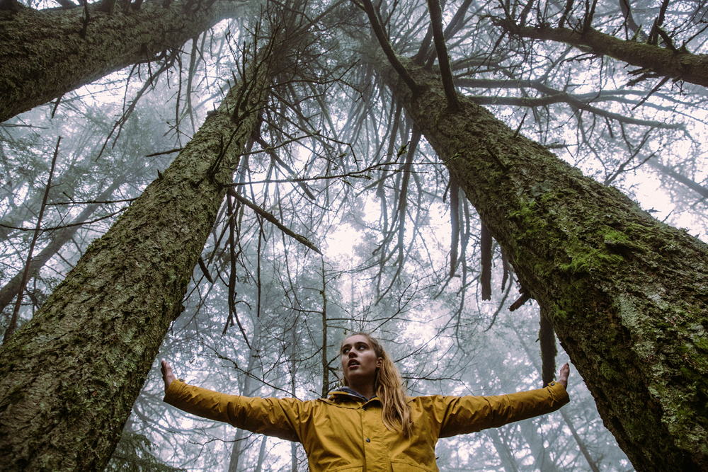 Skylar Dombroski, Pushing 2 large trees apart