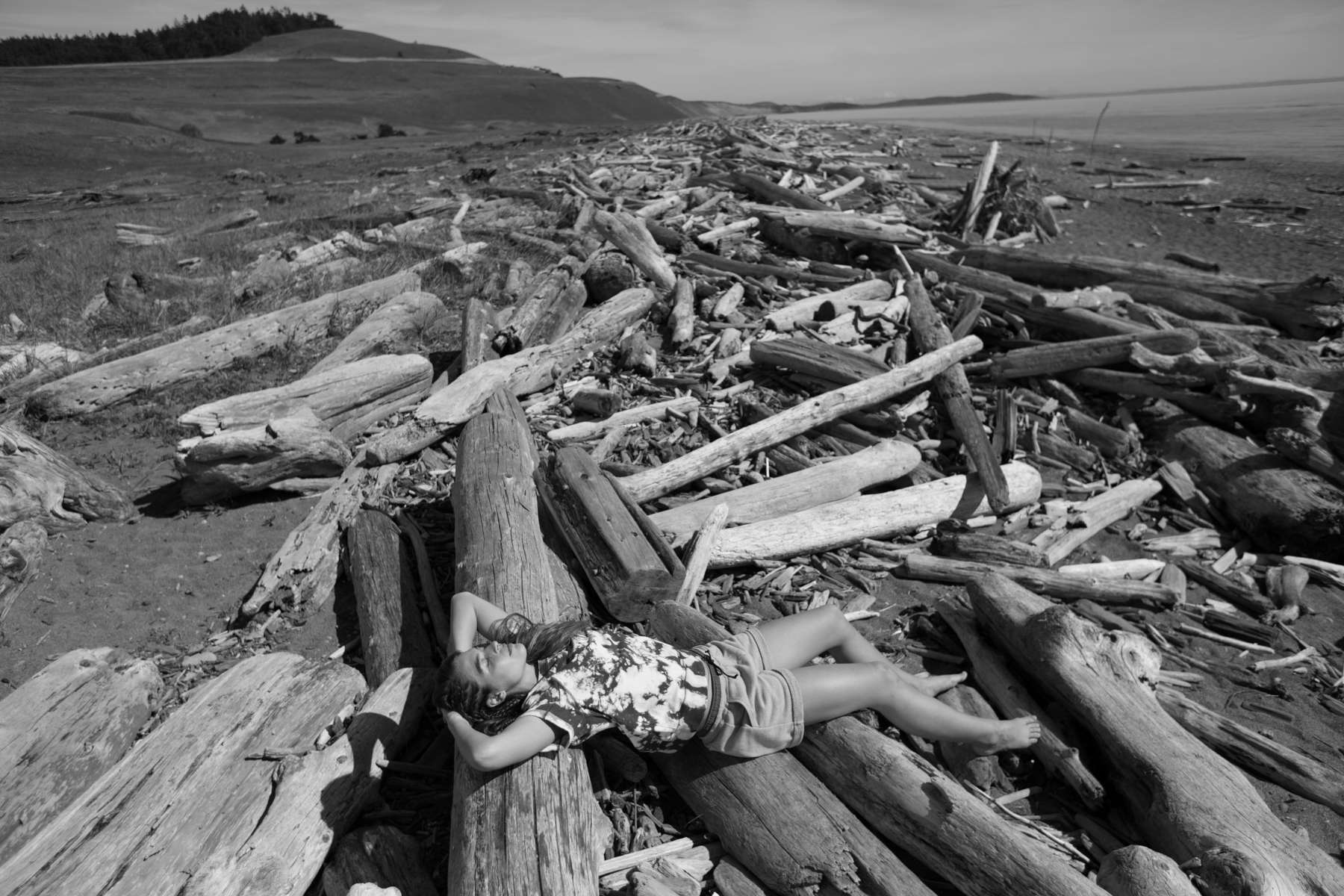 Tavia, Laying in a large pile of driftwood on a beach