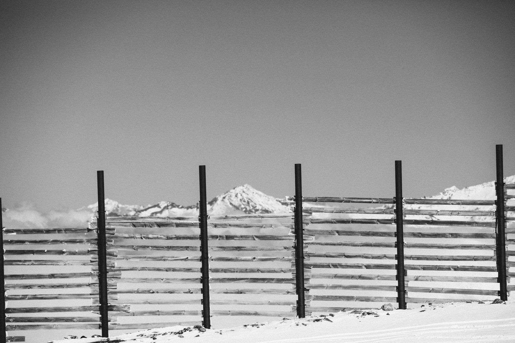 Cardrona Fence