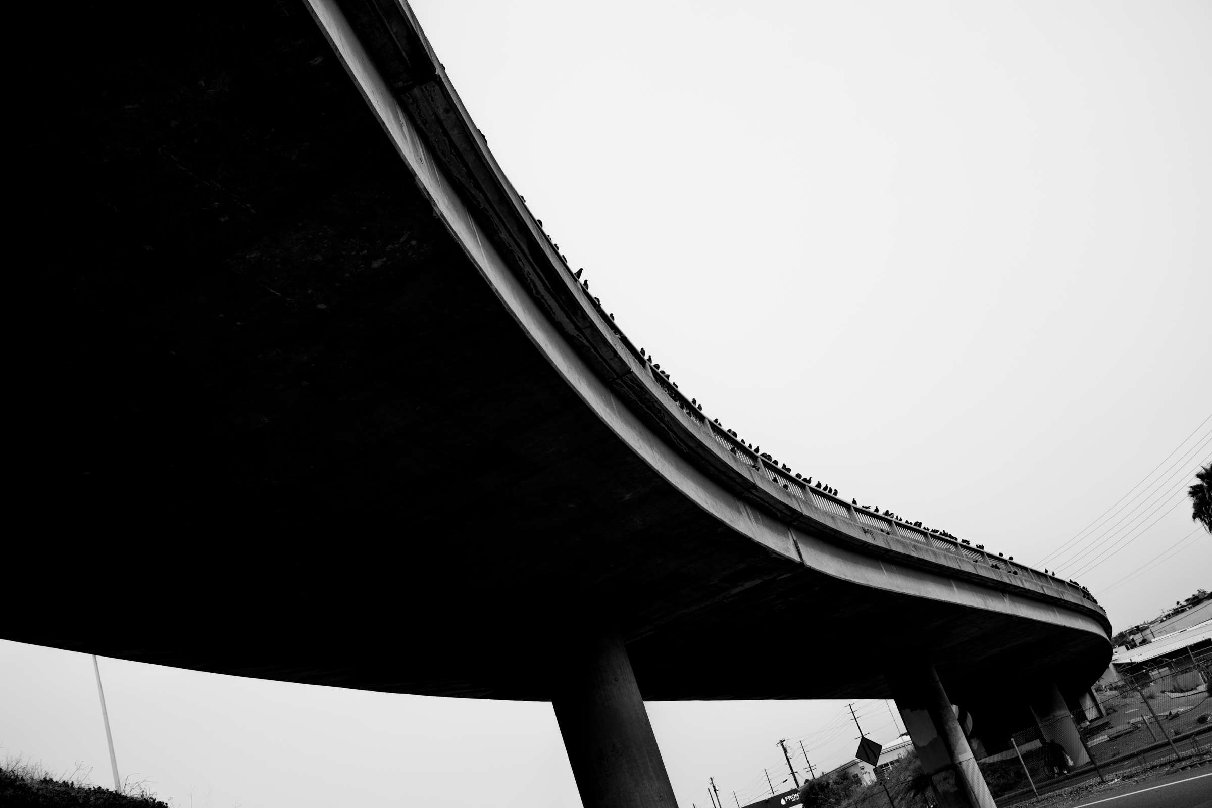 Bridge - Spy Optics