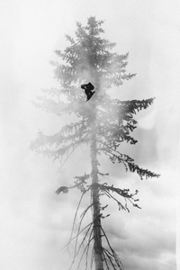 Snowboarder flying in front of tree