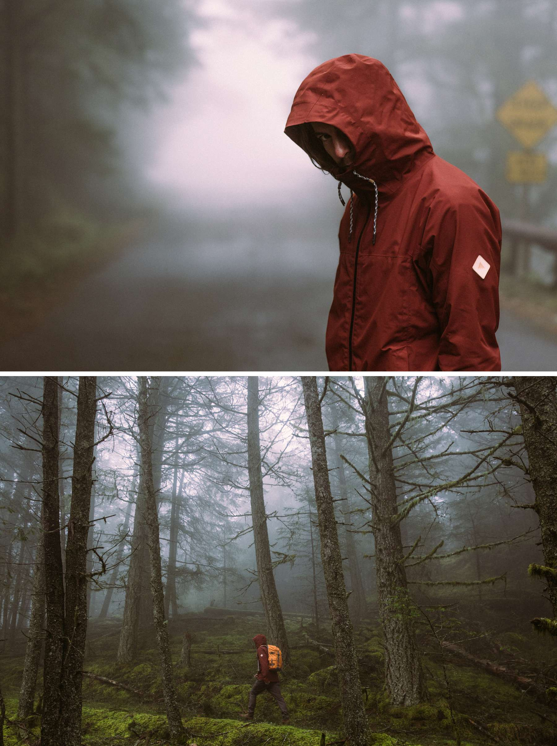 Mark Sollors. Fog Hood