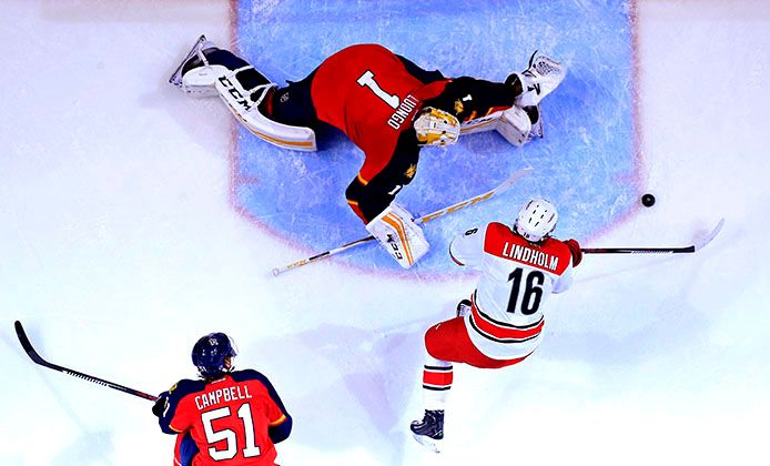 Overhead view of  Carolina goal vs Panthers.