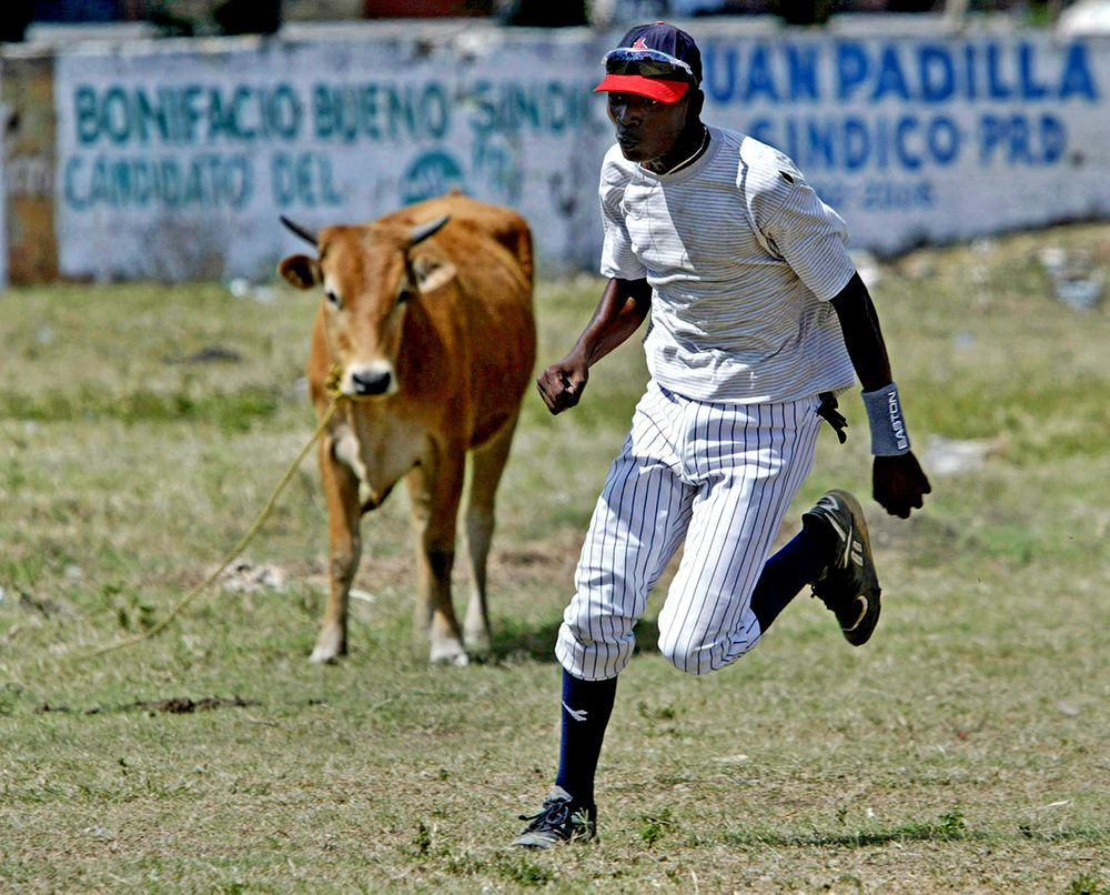 Shared field, Dominican Republic.