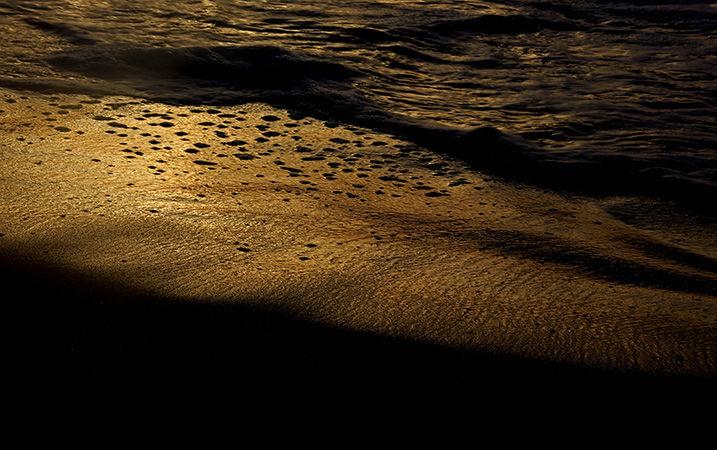 OCEAN  at Sunrise: golden shoreline.