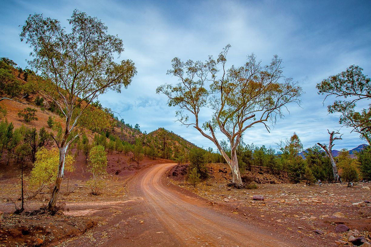 Flinders Ranges Track
