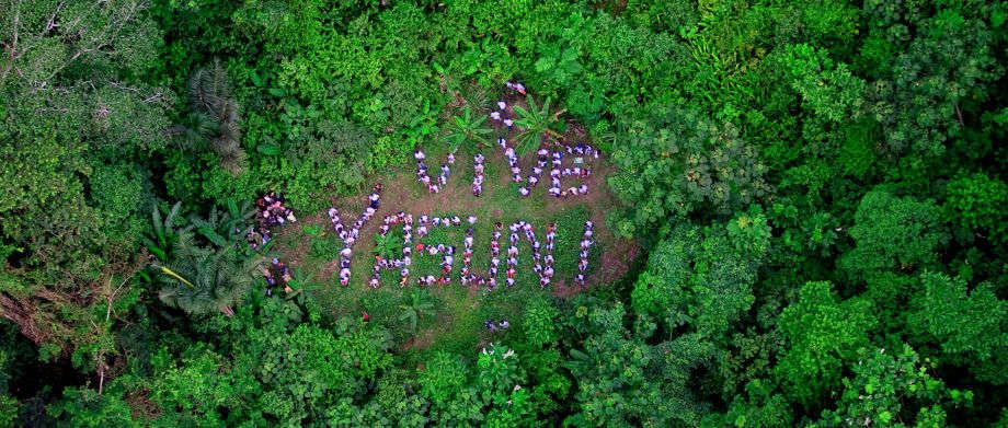 "Indigenous peoples and supporters including Ecuadorian Vice-President Lenin Moreno spell out ""Live Yasuni"" in the Yasuni National Park as they launch the campaign to save the park from oil development."