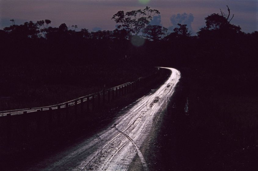 Fresh crude oil covers a road leading to the Cuyabeno Wildlife Preserve in 1993.