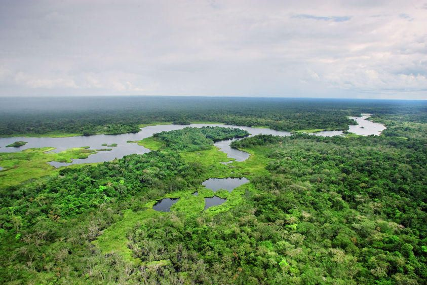 Jatuncocha Lagoon in Yasuni National Park.