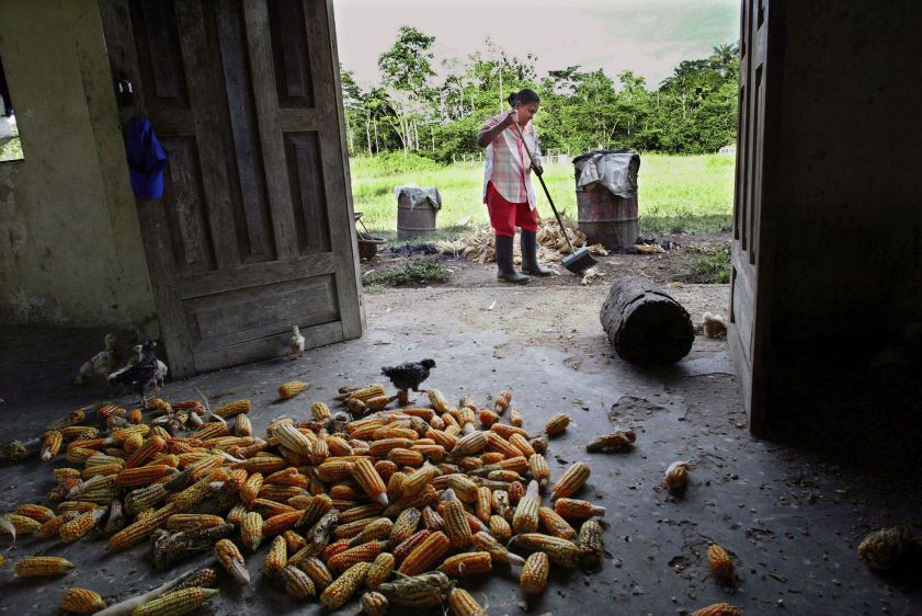 Maria Villacis sweeps in front of her barn on her farm near Guanta oil well #8. Villacis is sick from drinking contaminated water.