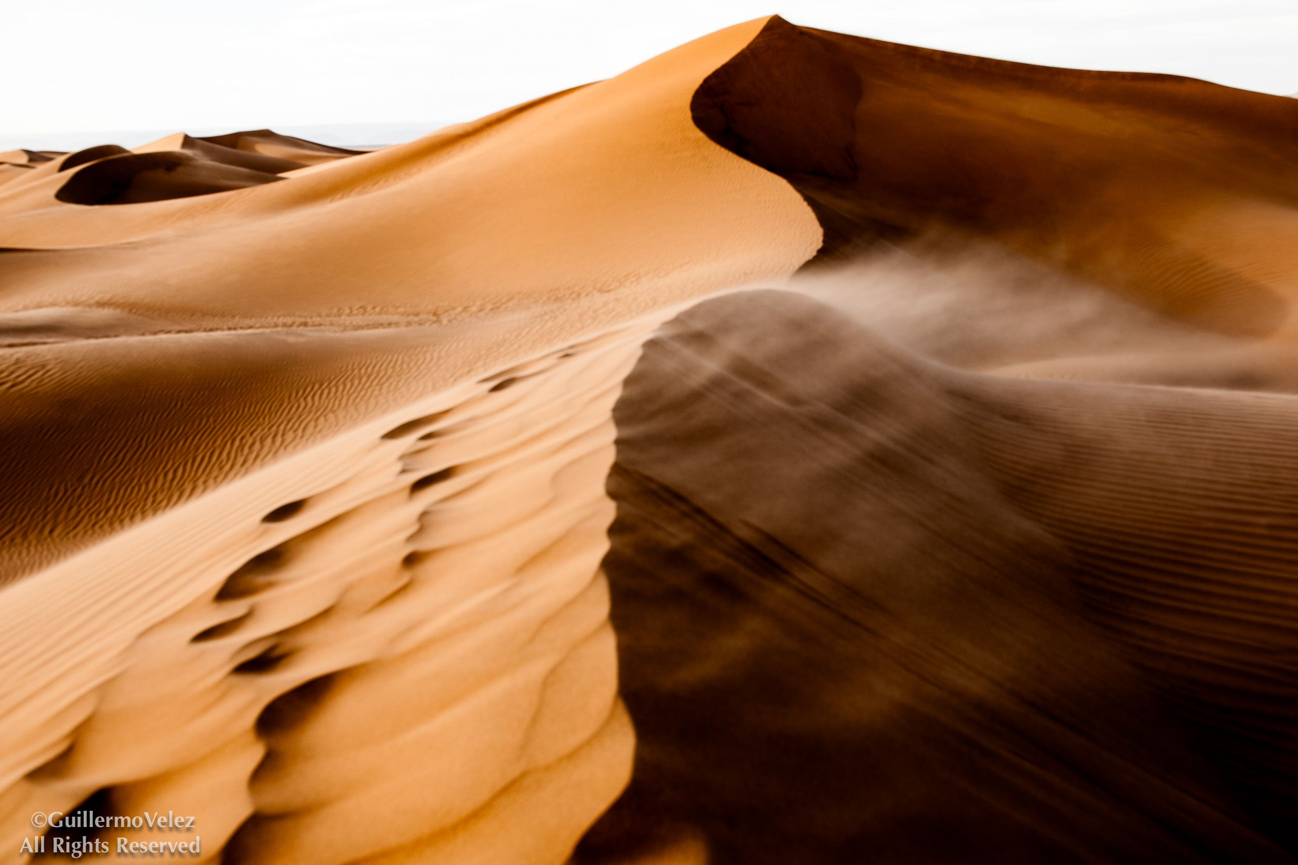 20140329_Desert__0264-Edit.jpg