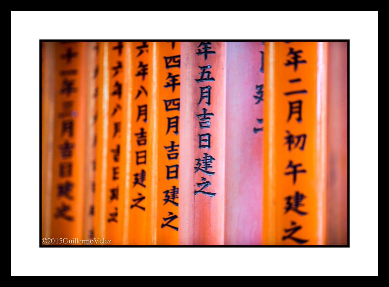 20150617_Fuji&Kyoto_0037 copy.jpg