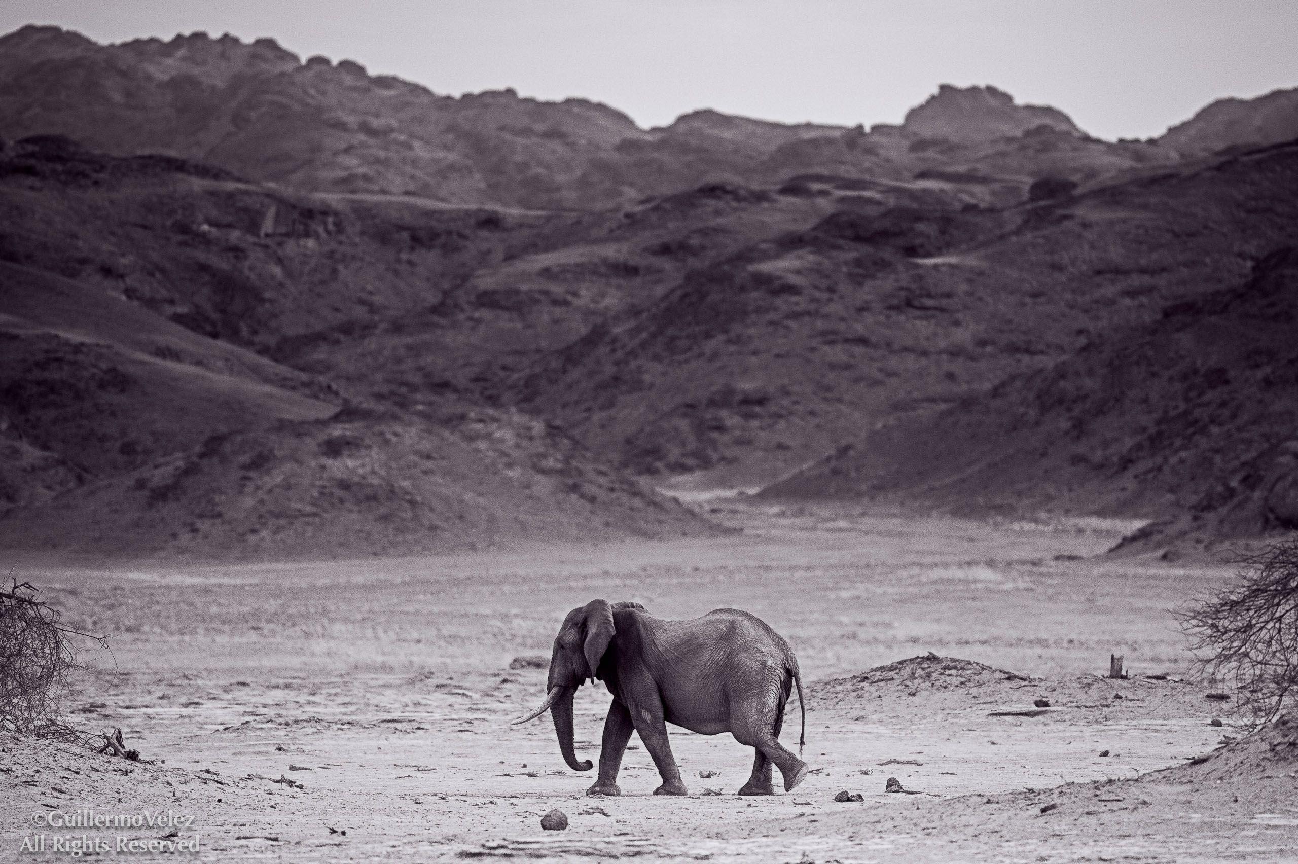 20141118_Namibia2_0326-Edit.jpg