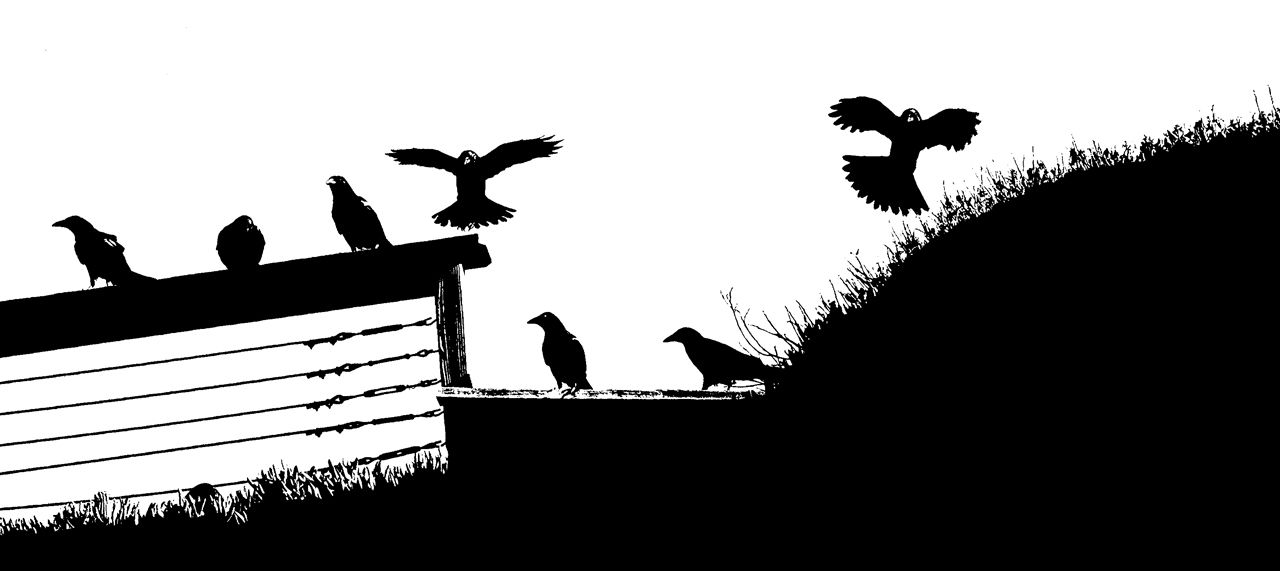 Bird Series #11 - Gorey Morning ©2015 L. Aviva Diamond