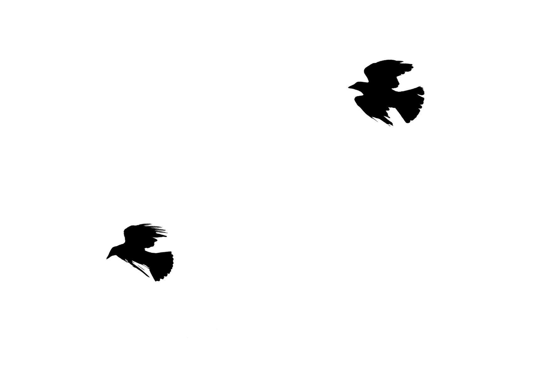 Bird Series #4R ©2012 L. Aviva Diamond