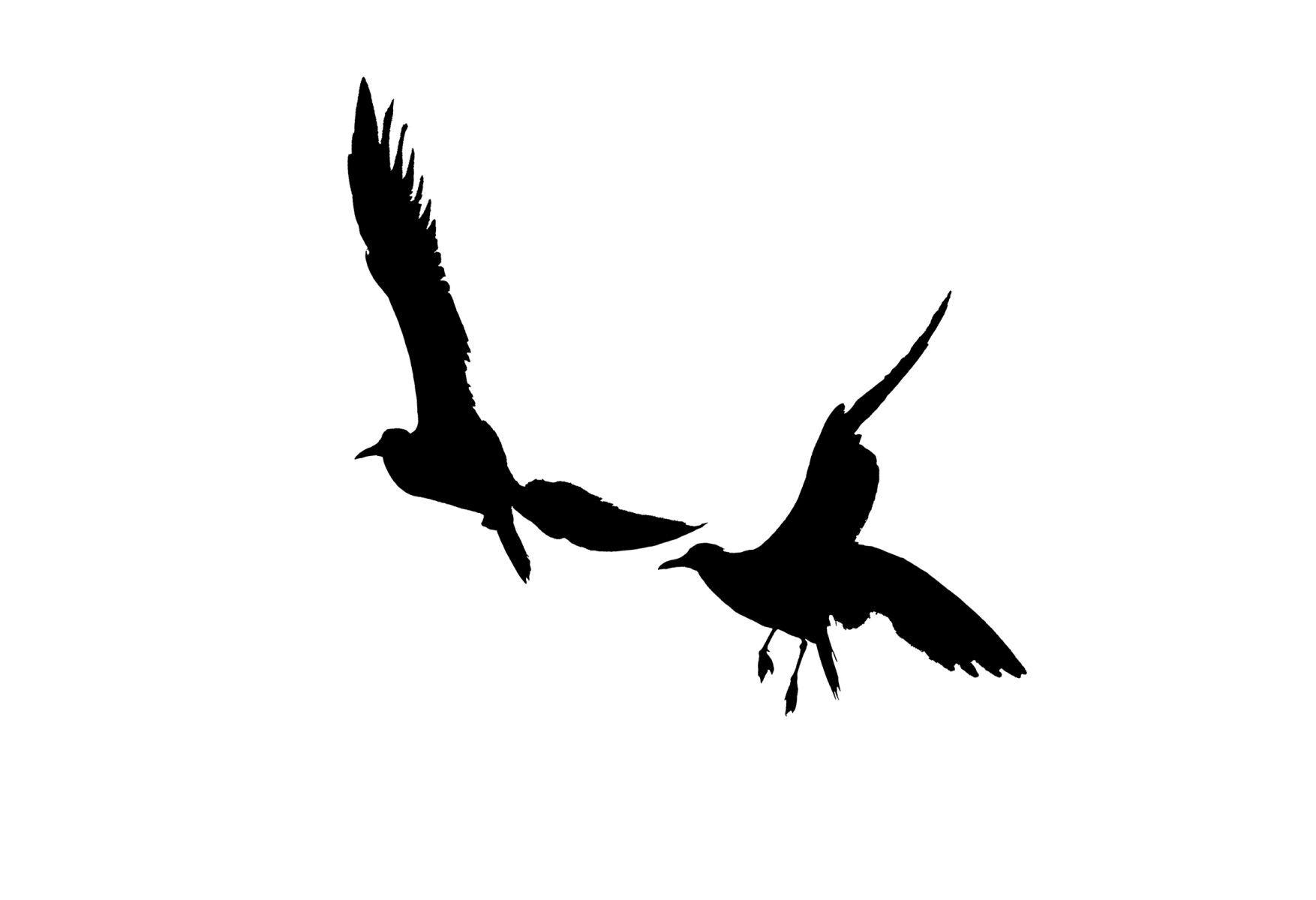 Bird Series #16R ©2013 L. Aviva Diamond