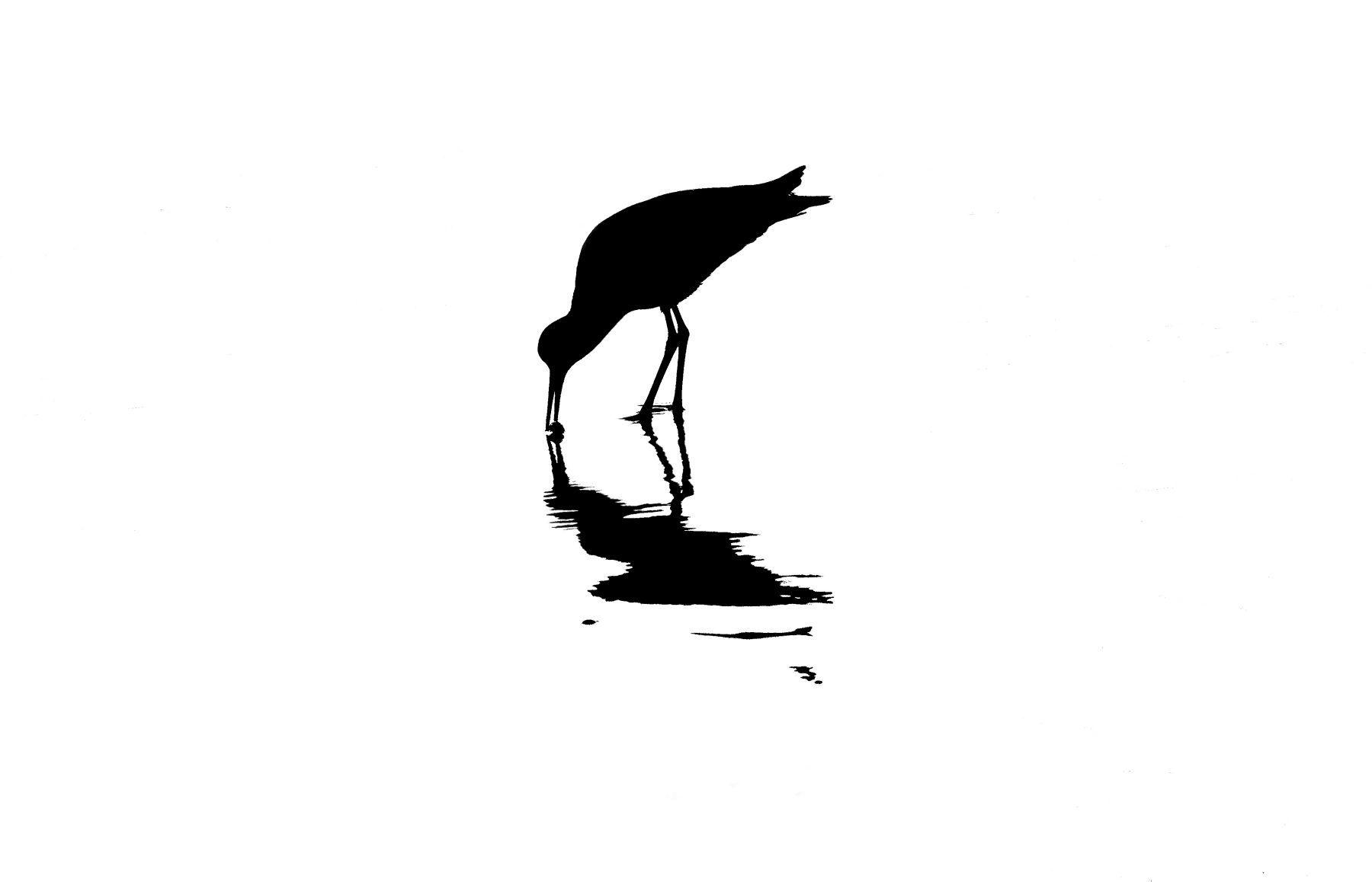 Bird Series #10 - Stillness ©2015 L. Aviva Diamond