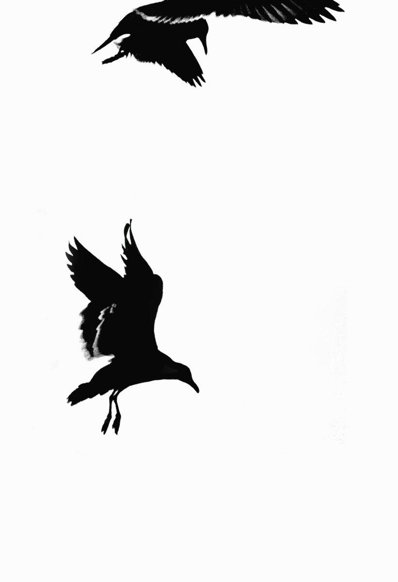 Bird Series #18 ©2013 L. Aviva Diamond