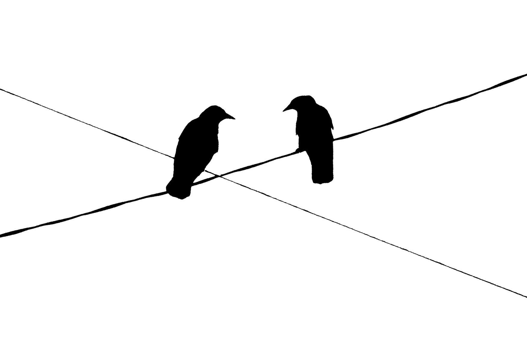 Bird Series #22 ©2012 L. Aviva Diamond