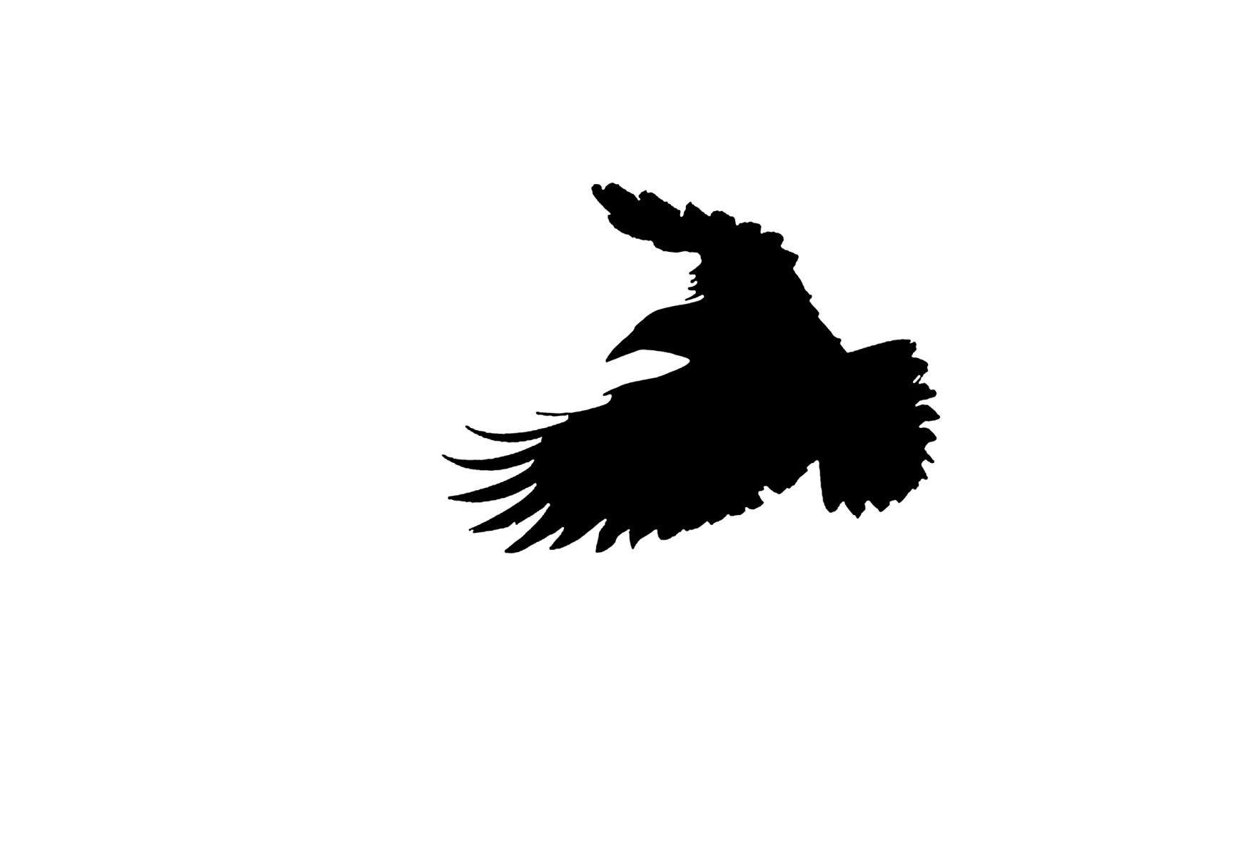 Bird Series #15 ©2013 L. Aviva Diamond