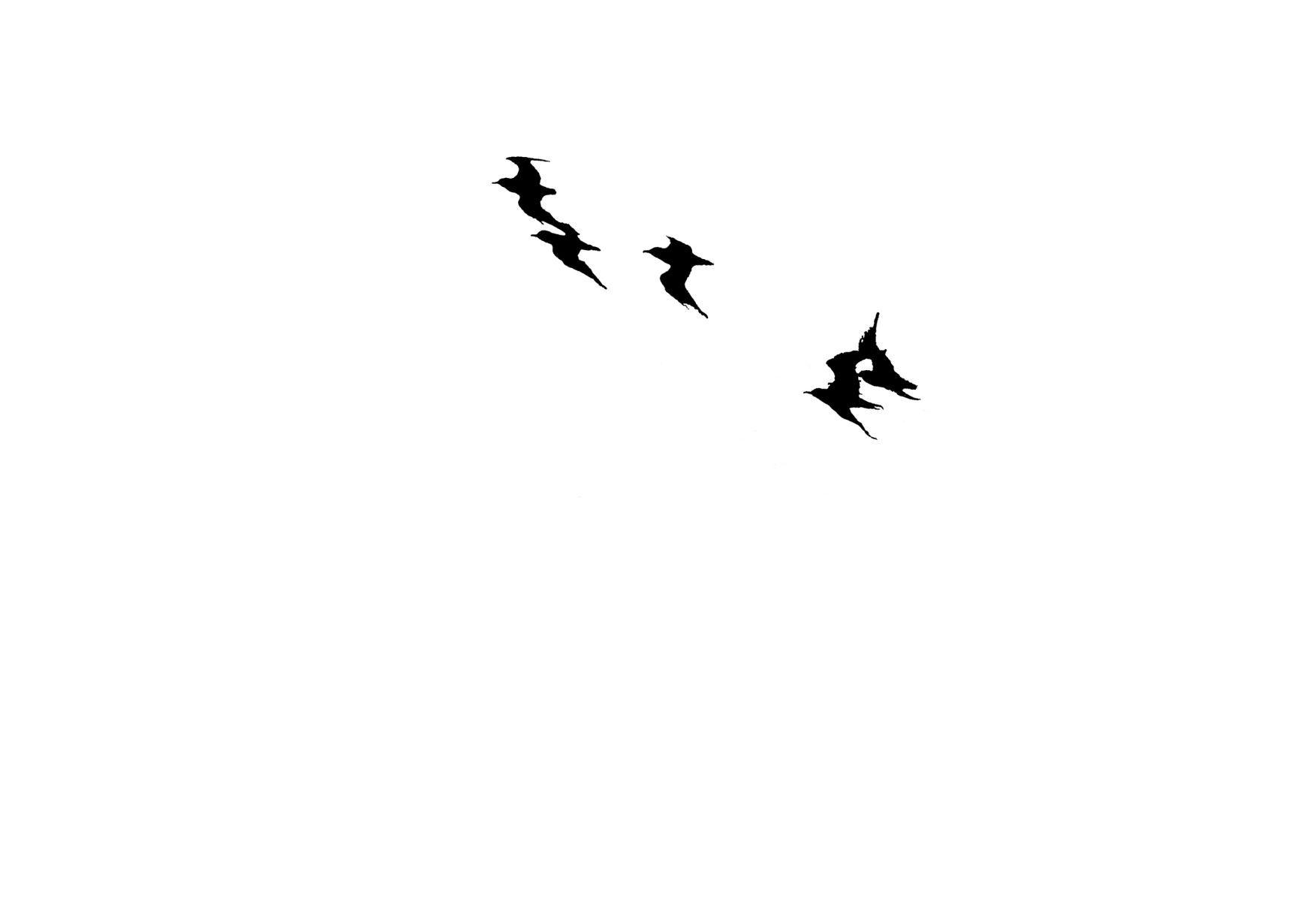 Bird Series #27 ©2013 L. Aviva Diamond
