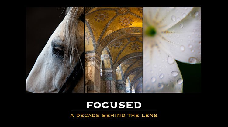 Focused - A decade behind the lens