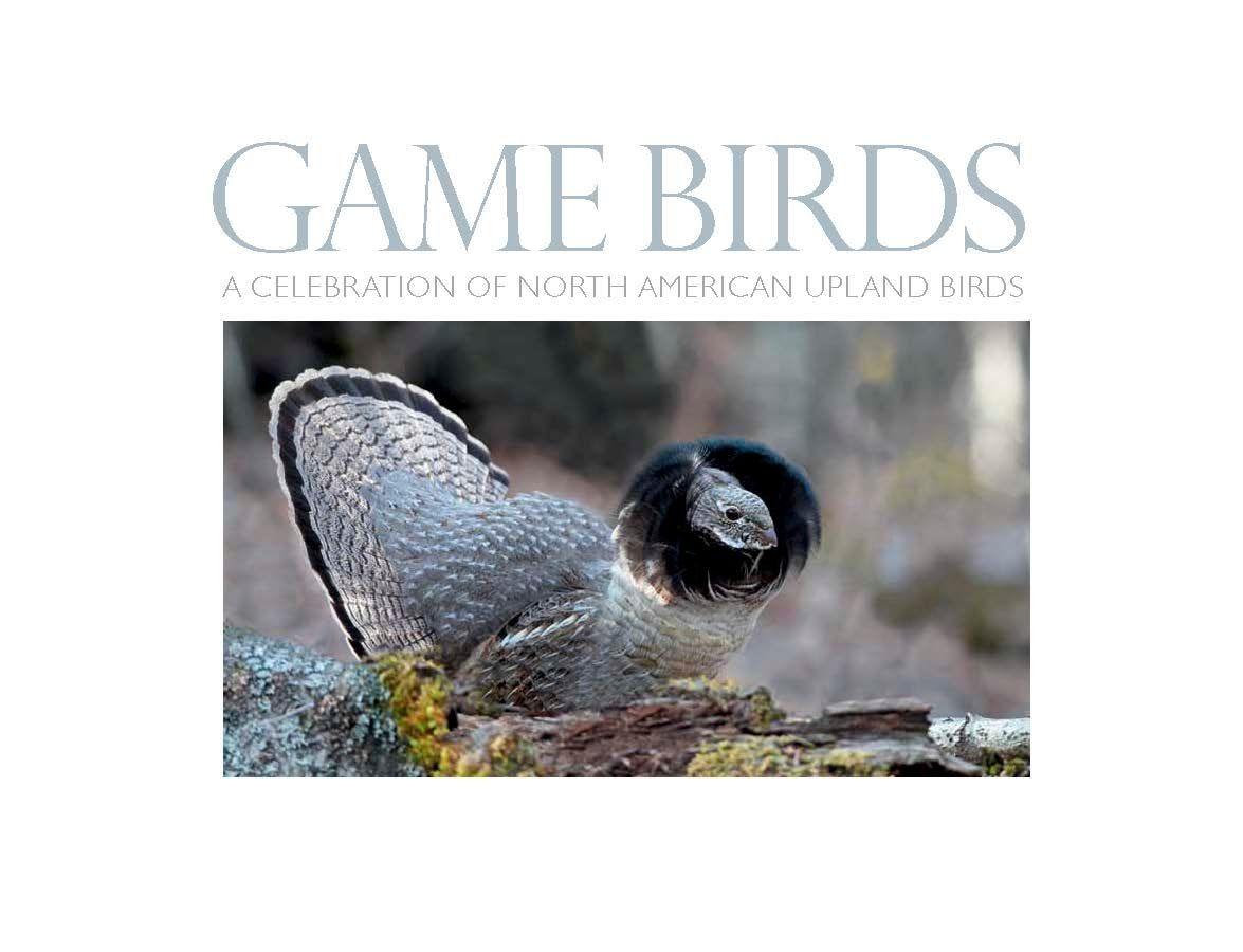 1gamebirds_front_matter_page_001.jpg
