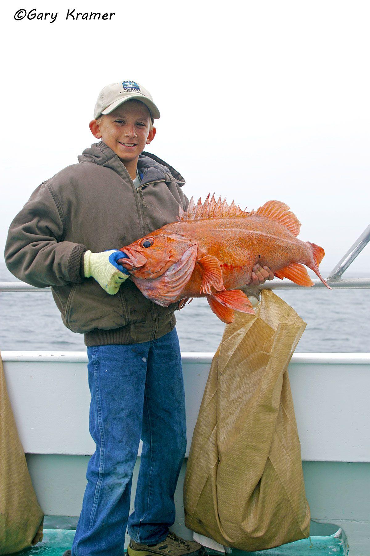 Angler (Dillon Lundberg) with Vermilion Rockfish- NFRv#013d