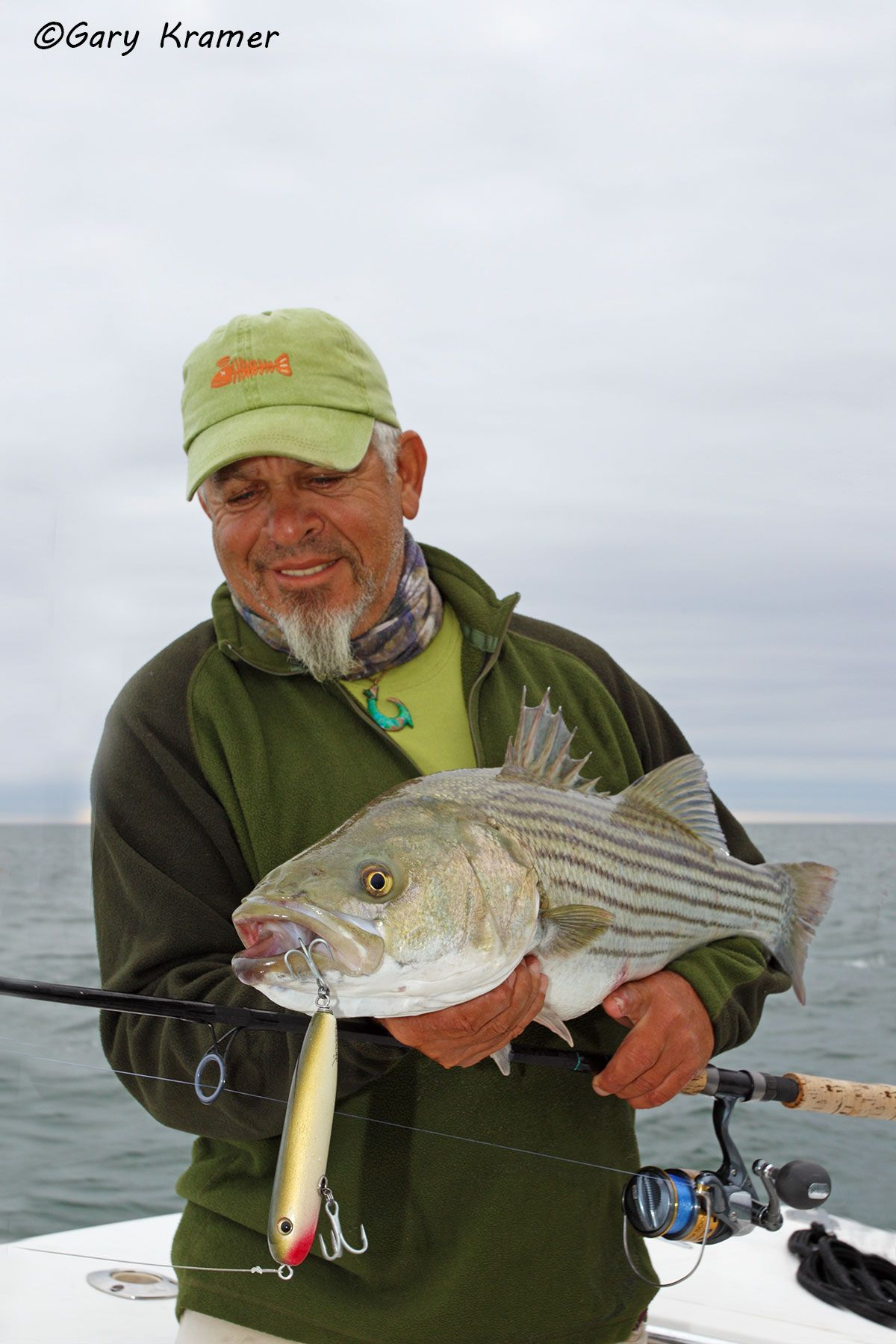 Angler (Tom Cornicelli) w/Striped Bass - NFSb#015d
