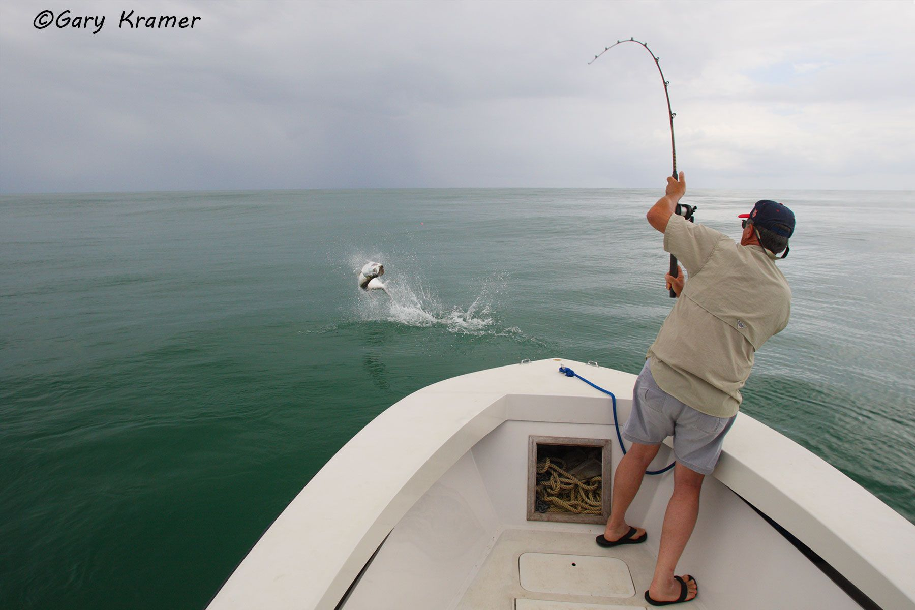 Angler fighting Tarpon, Panama - NFTf#014d