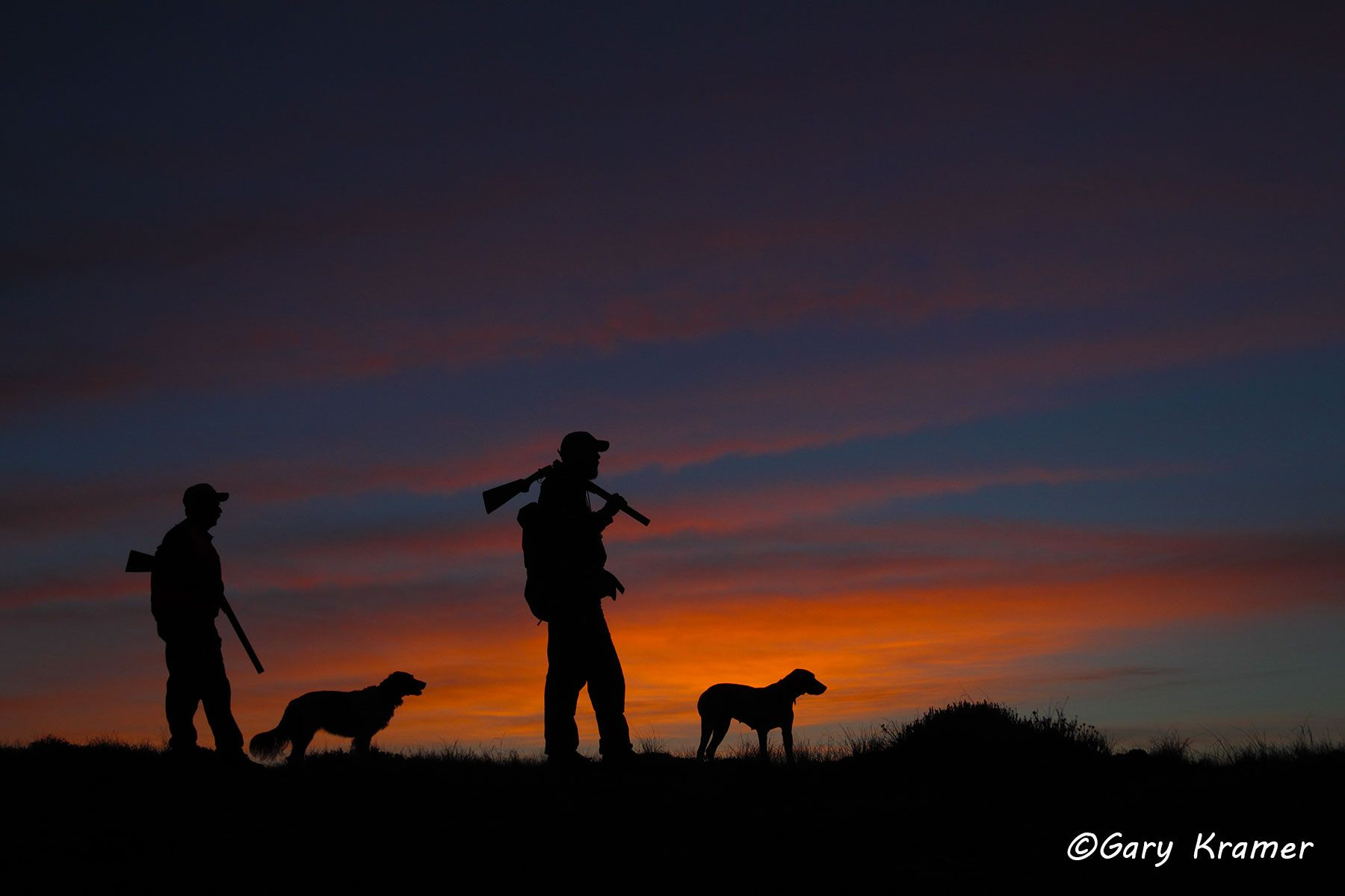 Upland hunter(s) with Setter(s) & Pointer(s) at sunrise/sunset - NHUspx#002d