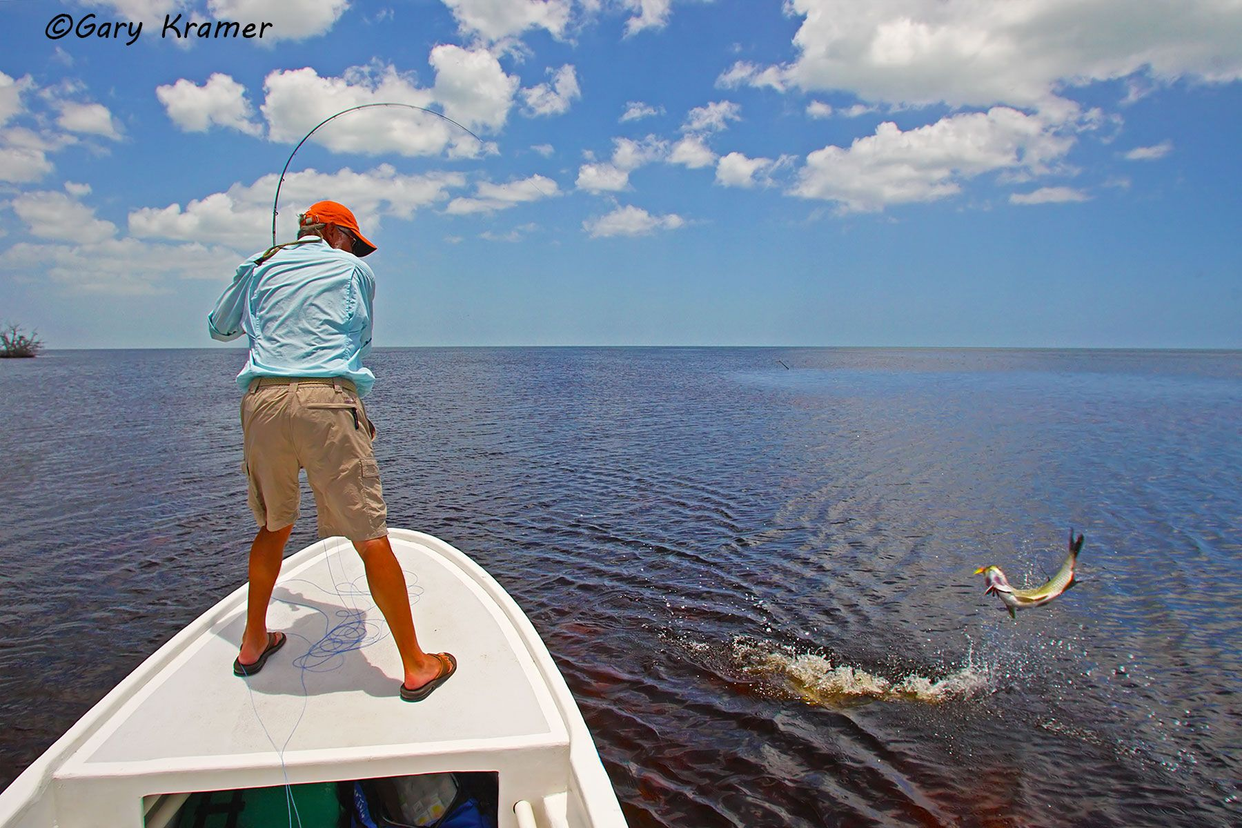 Flyfisherman fighting Tarpon, Mexico - NFTfi#026d