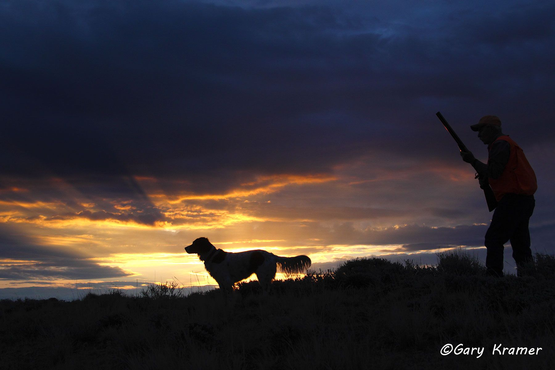 Upland bird hunter(s) & Setter at sunrise/sunset - NHUssx#008d