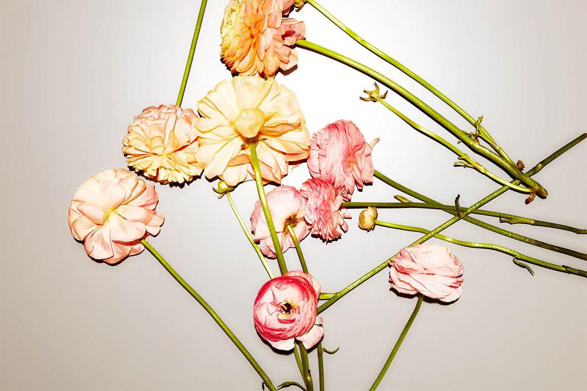 1springflowers156_crop