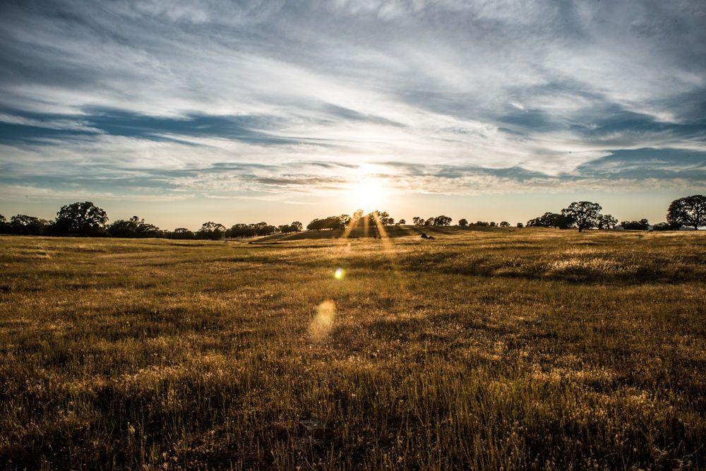Northern California Farmland