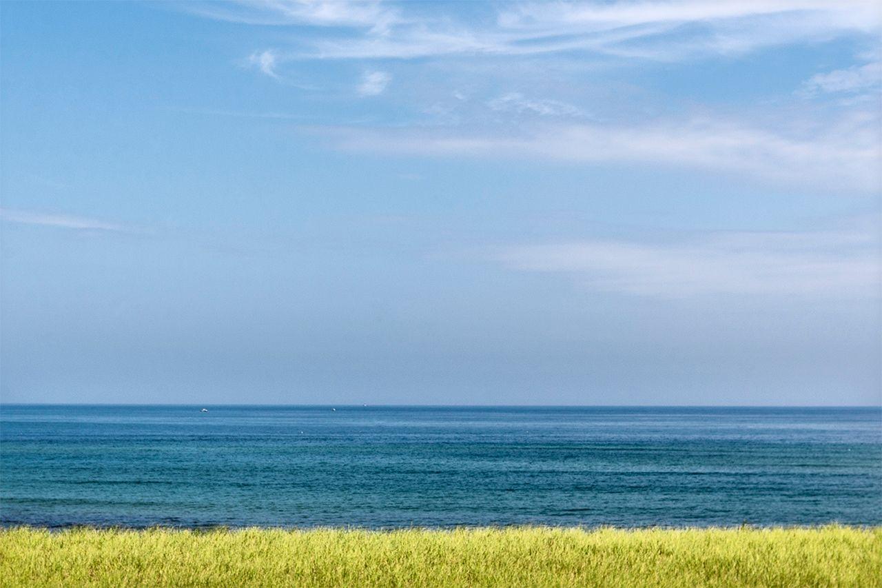 Grass Sea Sky
