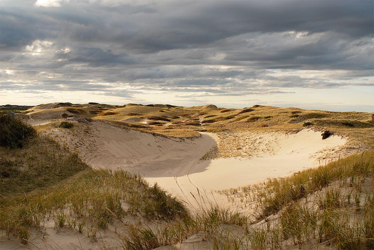 Dune Bowl