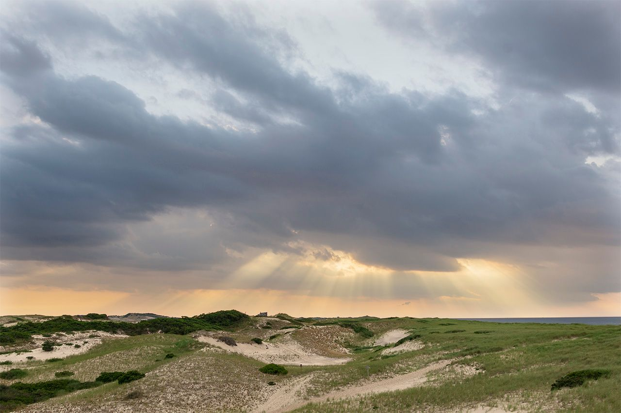 View of the Dunes