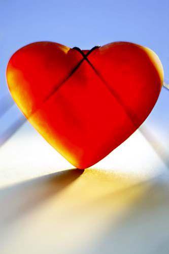 LOVEX2