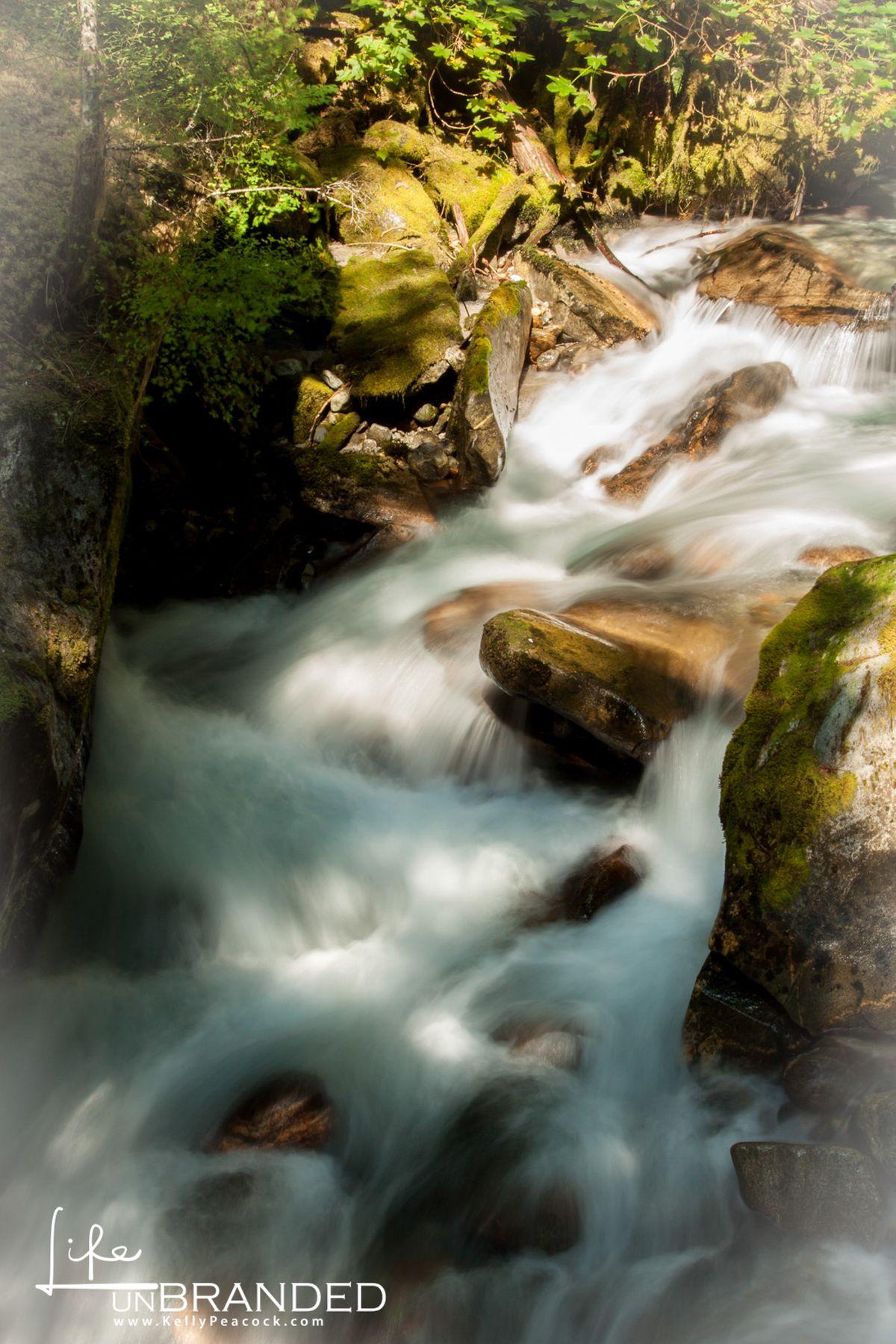 WA Creek2.jpg