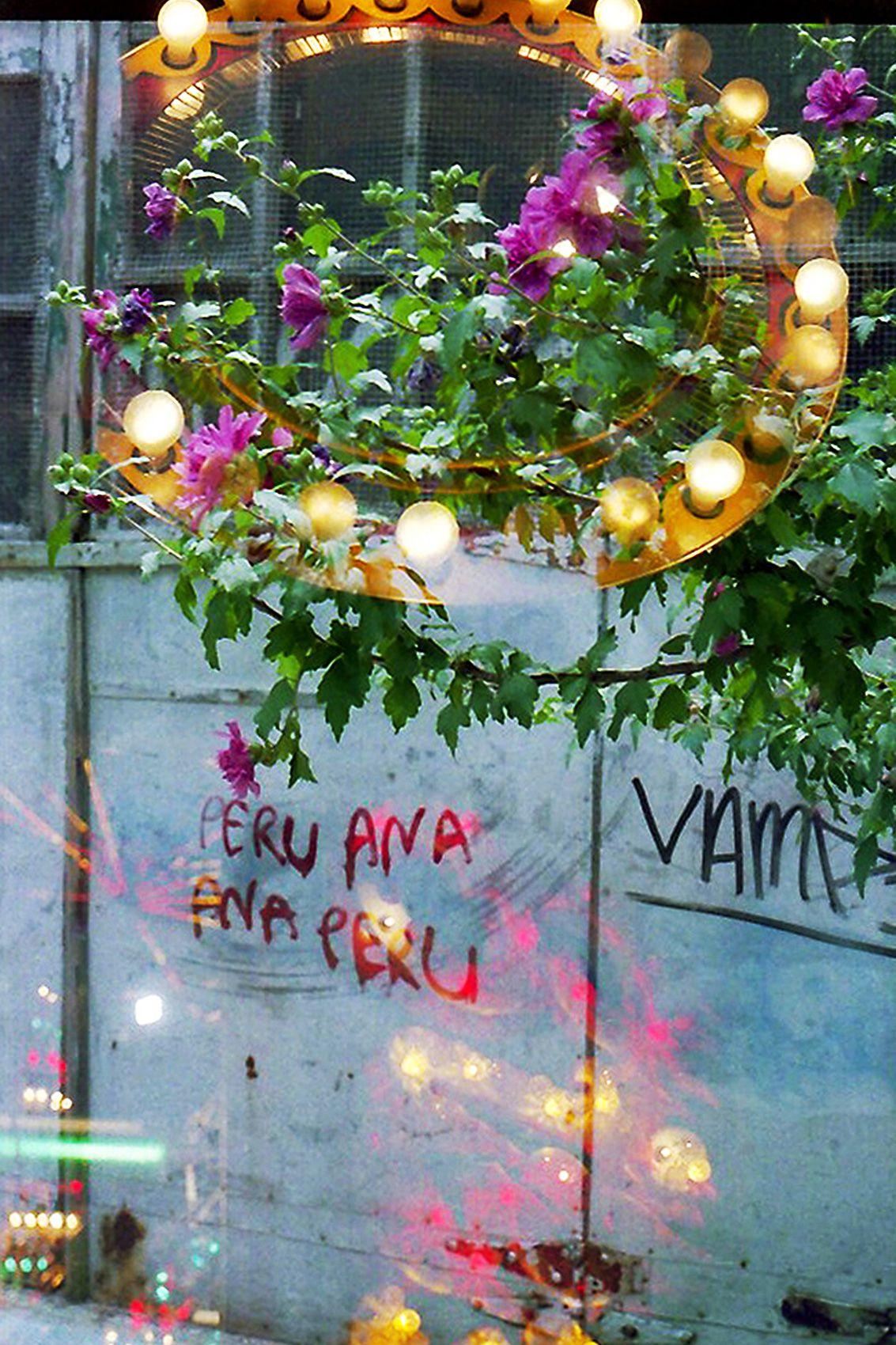Peru Ana is Everywhere