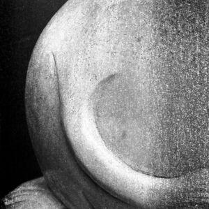 Serpentine Form 2013