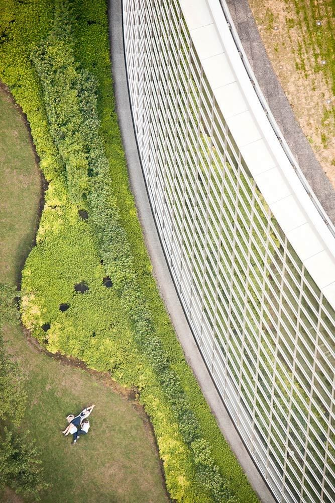 An aerial perspective of people in a park, Tokyo, Japan.