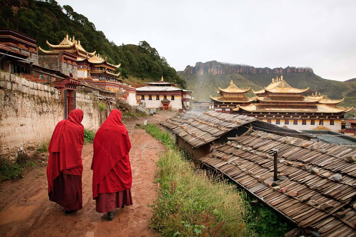 Monks at Serti Gompa, Langmusi, Gansu, China.