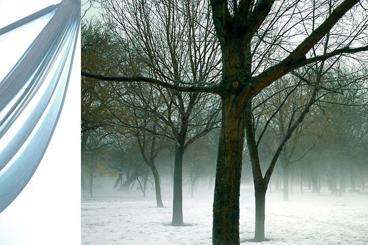 1blvd_fog