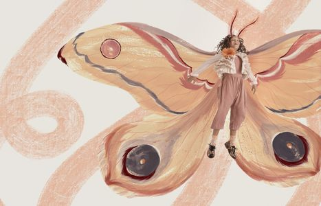 DREAMS_MOTH IN FLIGHTweb.jpg