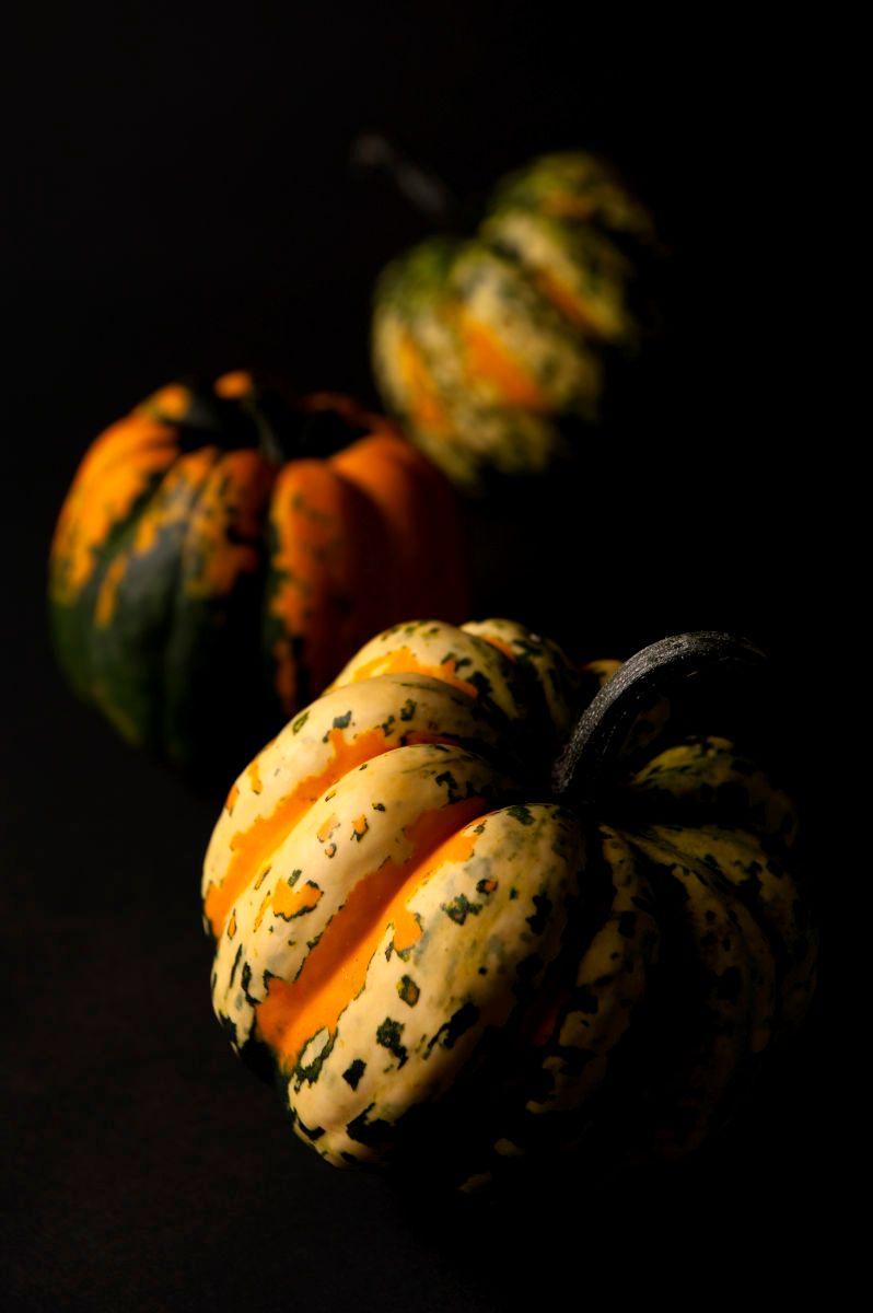 1paradiso_pumpkins.jpg
