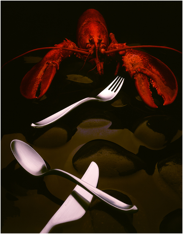 Denver Food Photographer  Lobster and Silverware