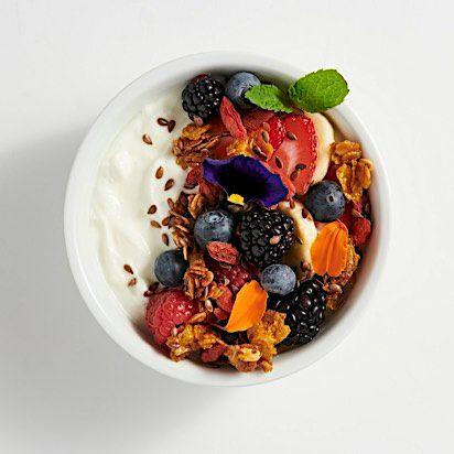 Lululemon Yogurt Bowl