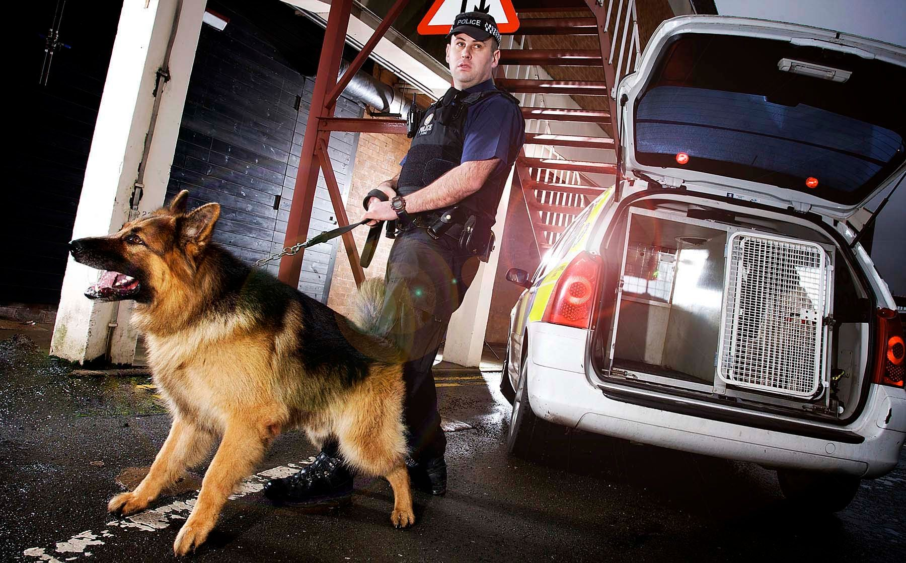 1west_midlands_police_dogs